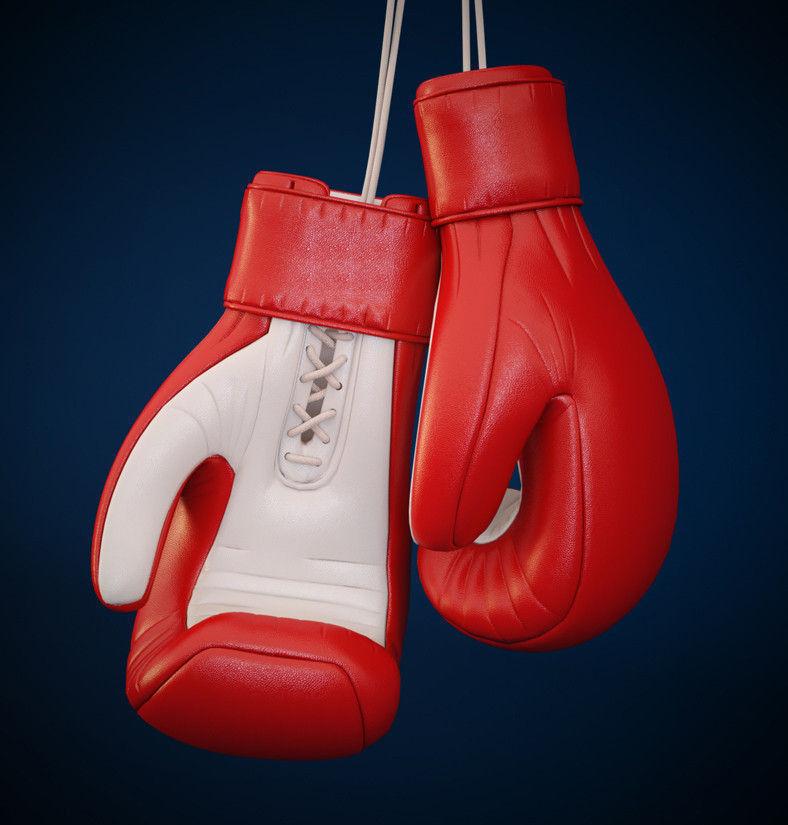Meshtastic Boxing Gloves